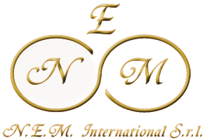 logo della N.E.M. International S.r.l.